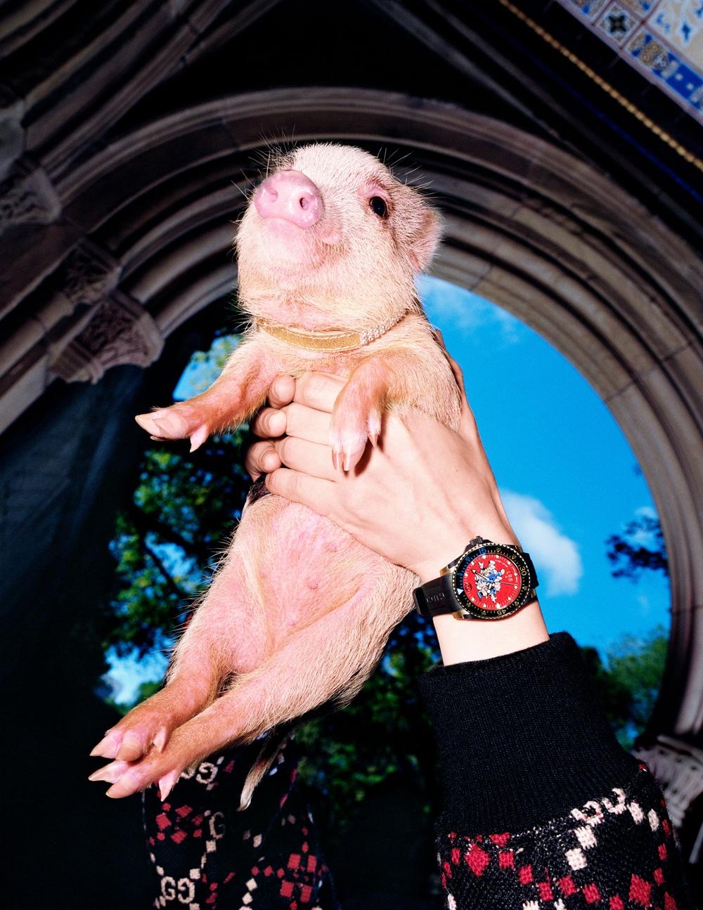 Gucci豬豬家族登場!迪士尼三隻小豬、翹屁嫩豬、飛天小豬粉嫩上線