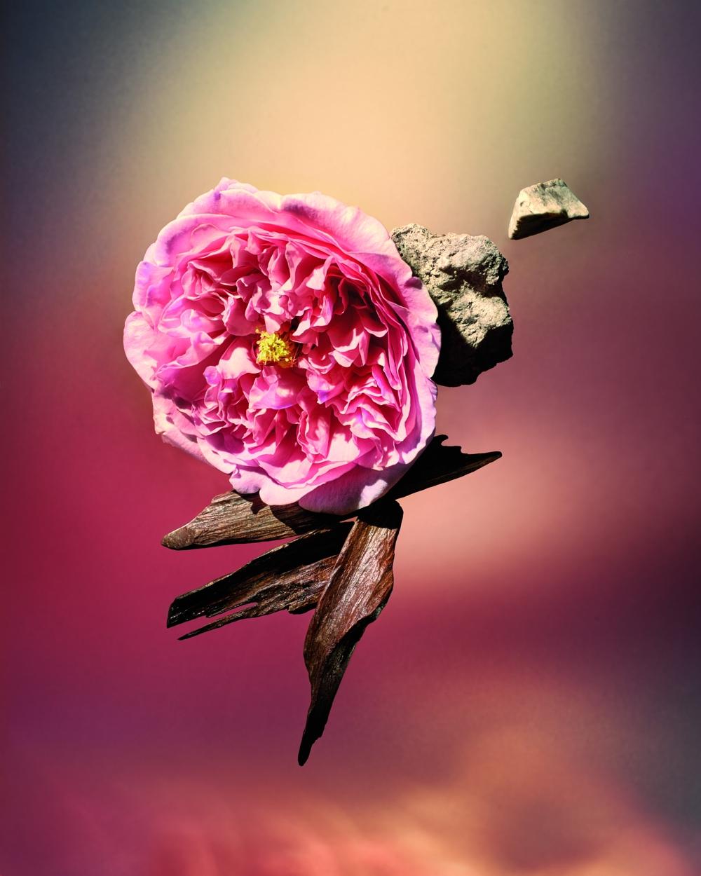 LV香氛新成員 Les Sables Roses清新玫瑰對比原始沉香的悠揚二重唱