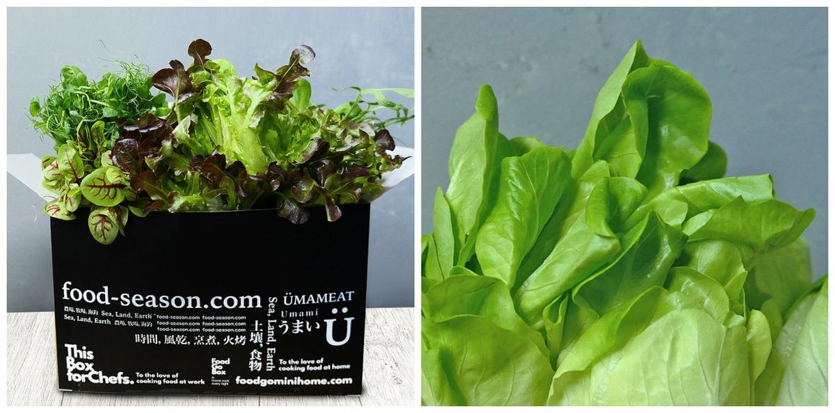 防疫蔬果箱、生鮮肉品這裡訂!14家新鮮蔬菜水果、優質肉品外送到家,雙北地區宅配到府