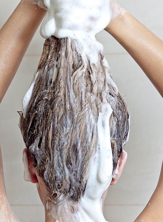每天鯊魚夾丸子頭,甚至洗頭次數都變少了,拯救疫情性頭皮困擾,從洗髮豆頭皮養護都要顧到
