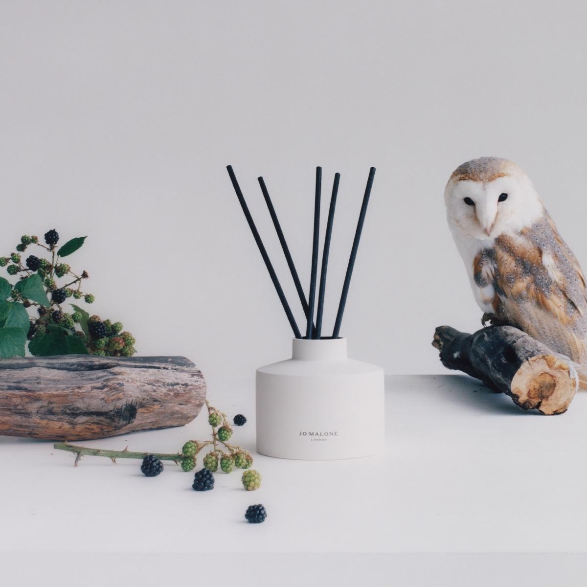 兼具溫暖與質感的Jo Malone London自香氛工藝陶瓷蠟燭系列,再推出藤枝擴香系列,讓妳真的捨不得出門了