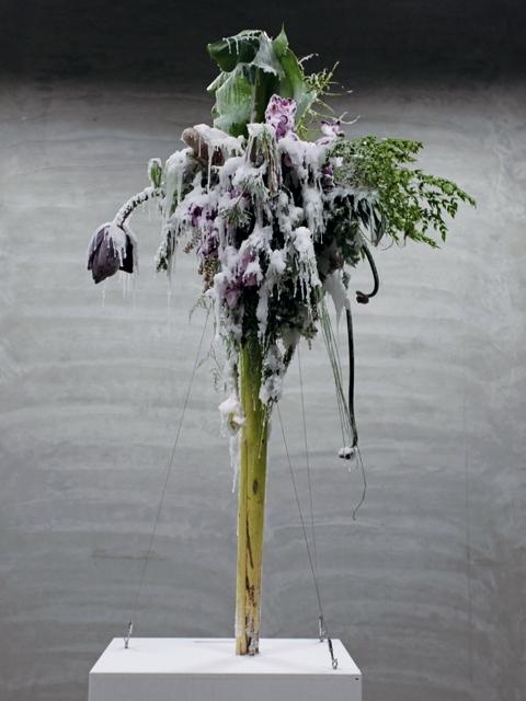 花已不成花  質物霽畫