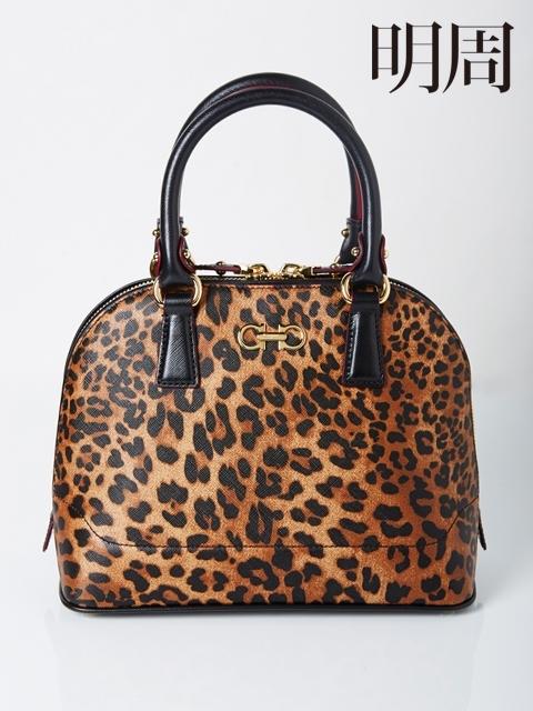 豹紋狂潮Wild Leopard