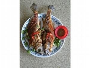 【尚武 家之味 輯一】海海人生味    阿美姨的魚料理