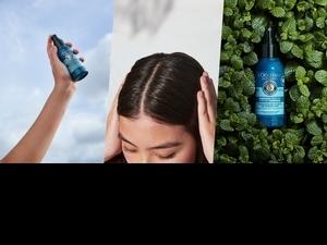 歐舒丹推出限量『 草本淨涼乾洗髮』 !今年夏天真的可以好清爽、好清香,不怕頭臭而保持距離了!