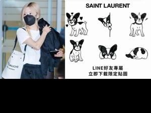 YSL帆布包大咖明星都在揹!台灣LINE官方帳號同步上線,還可以免費下載超萌鬥牛犬貼圖