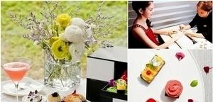 女孩們的花園午茶派對:就用春季甜點+光療美甲迎接新一季的到來吧!