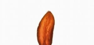 台灣胃-食物肖像系列  烤番薯