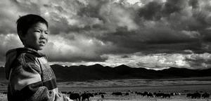 【滑指造影】藏族牧童