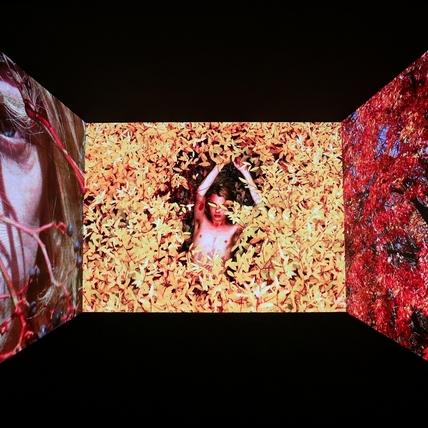 一窺Gucci執迷於愛的呢喃 《策展米開理》展5/13即將登台!