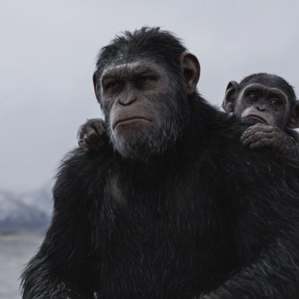 安迪席克斯「眼」技驚人 外媒力捧「凱撒」問鼎奧斯卡