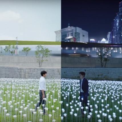 2017年最想發生戀愛的場景!韓國LED玫瑰海的浪漫延續