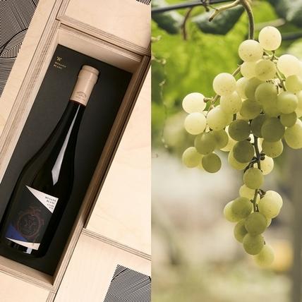 專屬台灣的風土滋味,威石東酒莊獲選世界13大「最佳新創酒莊」之一