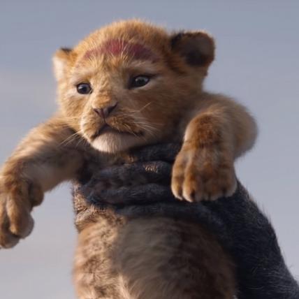經典畫面神還原! 《獅子王》擬真版超萌小辛巴曝光