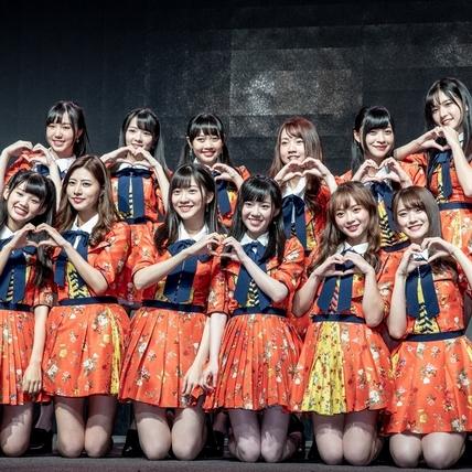 台版AKB48團員太銷魂 斗M粉絲央求:請踢我!