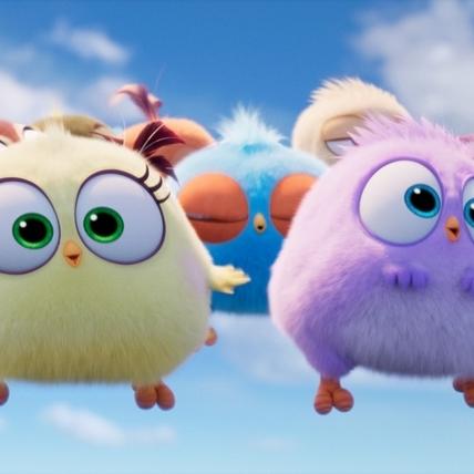 星二代加持! 蓋兒加朵、妮可基嫚女兒獻聲《憤怒鳥玩電影2》