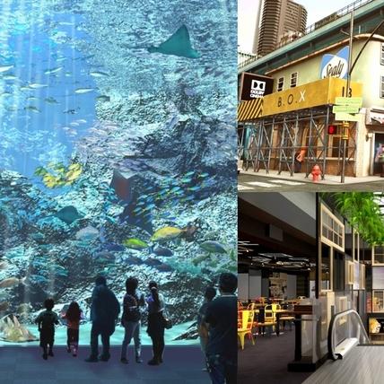 「桃園新光影城」暑假驚喜登場!日本XPARK水族館、動漫主題電影場域、40多間美食進駐,桃園人準備逛起來!