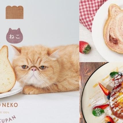 貓咪吐司X吳寶春2大限定套餐!全新口味「草莓斑紋」日本同步登場