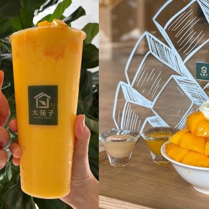 大苑子芒果季搶先開跑!首波推出「芒果冰沙、芒果翡翠」 2款飲品 「芒果山剉冰」只有市府夢想店吃得到!