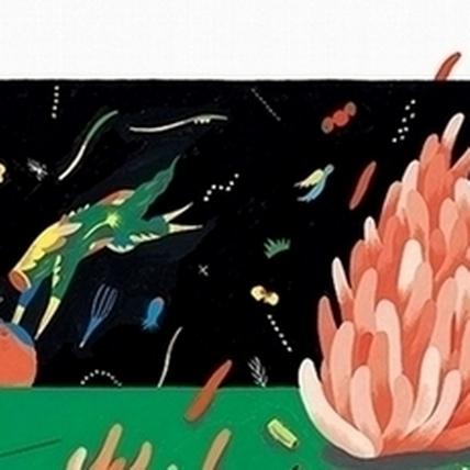 腦內的奇彩小宇宙  川貝母