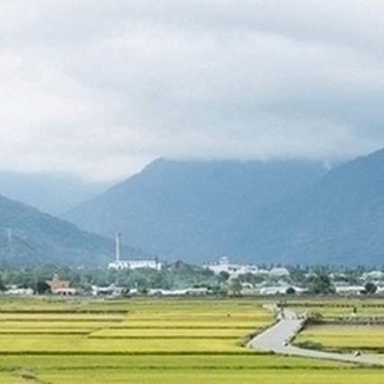 稻浪之中,時間之外  2015池上秋收稻穗藝術節