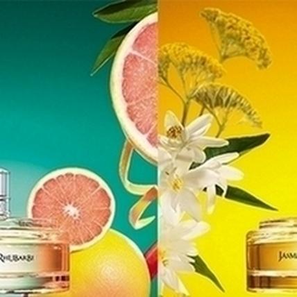 香氛與甜點的甜蜜跨界火花!歐舒丹新品邀你體會科西嘉島的美好時光
