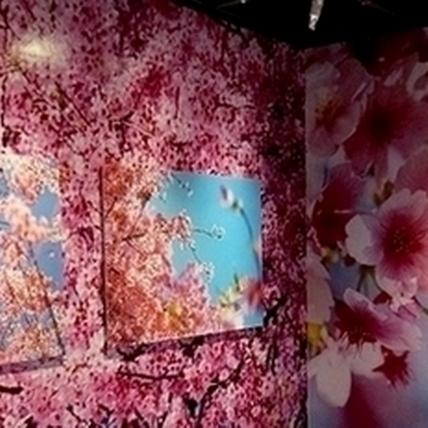 台北當代藝術館【蜷川實花展】展場搶先看!