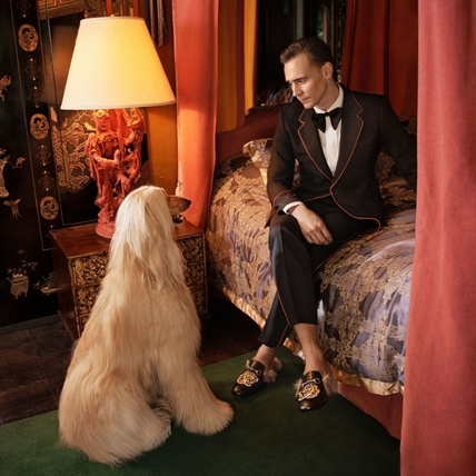 幸好泰勒絲放過他!邪神Tom Hiddleston也加入Gucci代言大軍