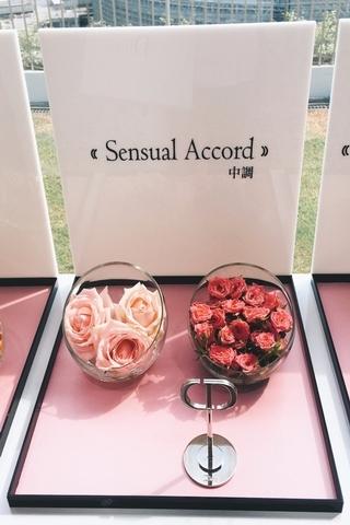 性感的玫瑰中調