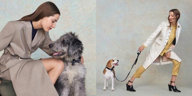 毛小孩也要晉升時尚咖!CHARLES & KEITH最新寵物配件,萌到無極限!