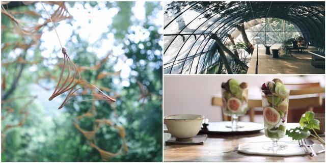 台版瀨戶內海「島嶼秘境」限定登場!20位創作者、5大主題展區,打造療癒五感的山林藝術季!