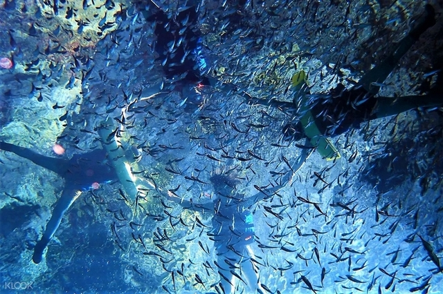 2. 綠島:初學者到高手都衝的潛水天堂