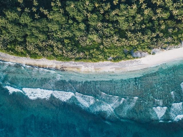 寶珀「心繫海洋」計畫發表最新成果!東非弗雷格特島珊瑚礁群祕境線上看