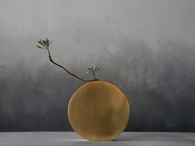 Yang Yang 黃銅花器