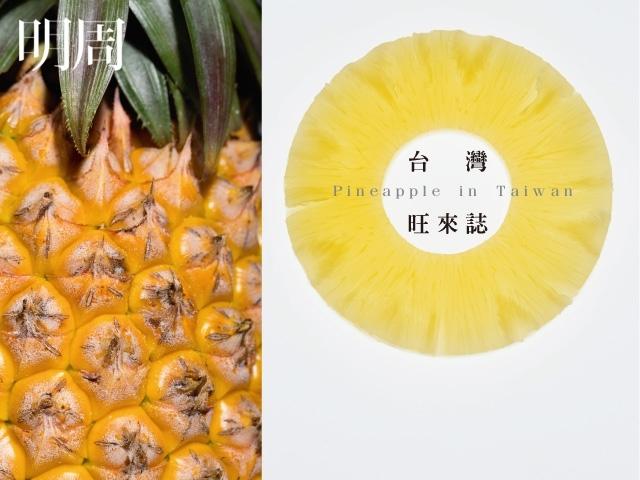台灣 旺來誌 Pineapple In Taiwan