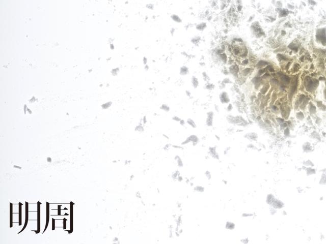 圓皮裹鮮  台灣胃─食物肖像系列