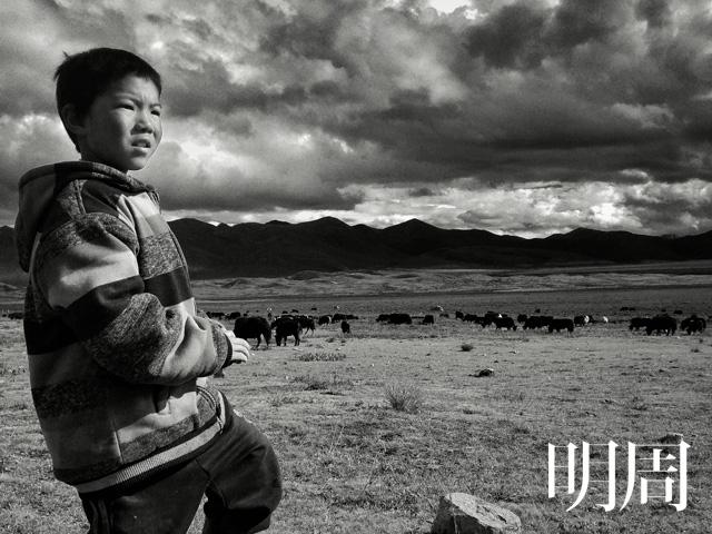 滑指造影藏族牧童