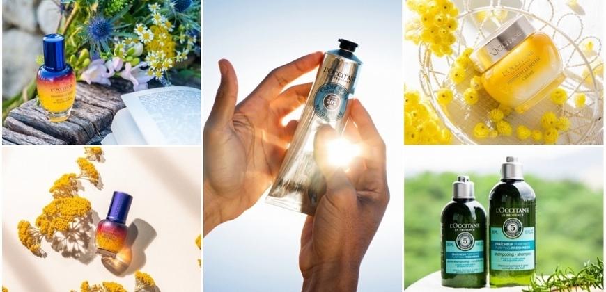 年假和歐舒丹一秒保養到南法 #乳油木護手霜、#星光瓶 、蠟菊霜~明星網紅網友都推爆的五大必買清單都在這!