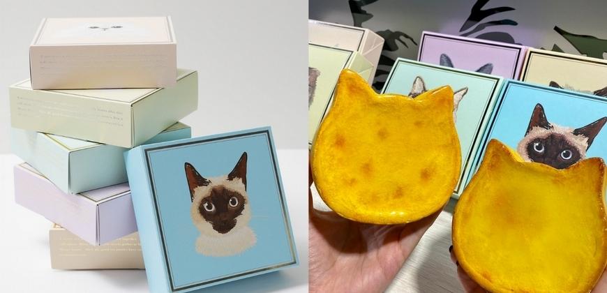 貓奴們尖叫!東京人氣伴手禮「貓貓起司蛋糕」2種口味超萌登台  巡迴快閃時間都在這!